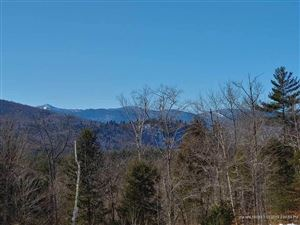 Tiny photo for Lot80 Backcountry DR, Newry, ME 04261 (MLS # 1338411)