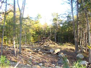 Photo of 17 Garrison Woods Drive, Gray, ME 04039 (MLS # 1411502)