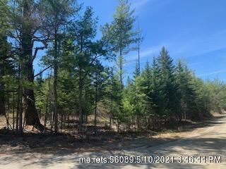 Photo of TBD Long Falls Dam Road, Lexington Township, ME 04961 (MLS # 1490709)