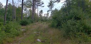 Photo of 00 Upton Road, Harrison, ME 04040 (MLS # 1429782)