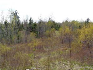 Tiny photo for 0 High Street, Milbridge, ME 04658 (MLS # 1350789)