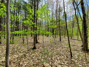 Tiny photo for M9 L41 Sand Hill Road, Smithfield, ME 04978 (MLS # 1406979)