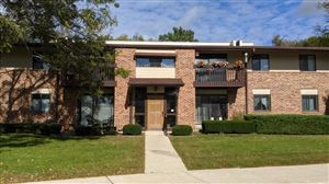 Photo of 333 Park Hill Dr #C, Pewaukee, WI 53072 (MLS # 1662399)