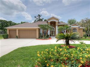 Photo of 1079 RIVERSIDE RIDGE ROAD, TARPON SPRINGS, FL 34688 (MLS # U8042133)