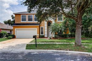 Photo of 808 BERRY BRAMBLE DRIVE, BRANDON, FL 33510 (MLS # T3193245)