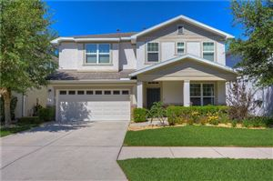 Photo of 3519 BROOK CROSSING DRIVE, BRANDON, FL 33511 (MLS # T3169311)