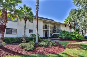 Photo of 5020 MILL POND ROAD #3174, WESLEY CHAPEL, FL 33543 (MLS # T3186447)