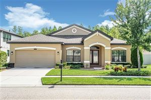 Photo of 8418 BLUEVINE SKY DRIVE, LAND O LAKES, FL 34637 (MLS # T3187491)