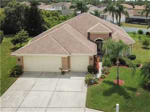 Photo of 2645 TIMACQUA DRIVE, HOLIDAY, FL 34691 (MLS # U8054633)