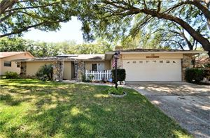Photo of 15 SEEDLING DRIVE, SAFETY HARBOR, FL 34695 (MLS # U8041747)