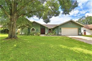 Photo of 1607 S GOLFVIEW DRIVE, PLANT CITY, FL 33566 (MLS # P4906781)