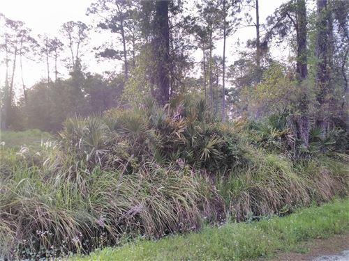Photo of 7TH AVENUE, DELAND, FL 32724 (MLS # A4503881)