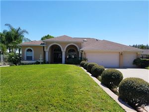 Photo of 3112 FLAT ROCK PLACE, LAND O LAKES, FL 34639 (MLS # T3163999)