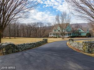 Photo of 17671 ARTISTS VIEW CT, ROUND HILL, VA 20141 (MLS # LO10160319)