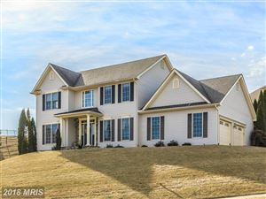 Photo of 205 LAYLA DR, MIDDLETOWN, MD 21769 (MLS # FR10135426)