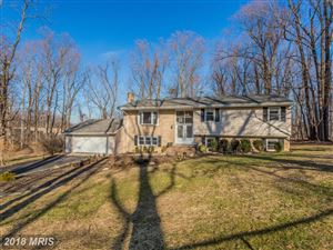 Photo of 1606 WHITE PINE DR, VIENNA, VA 22182 (MLS # FX10136771)