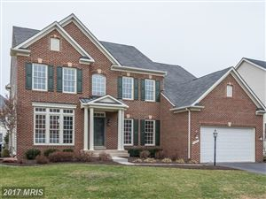 Photo of 18471 CATTAIL SPRING DR, LEESBURG, VA 20176 (MLS # LO10117787)