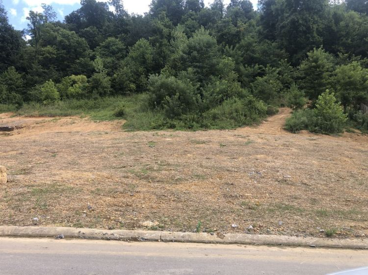Photo for 0 Chisolm Trail, Goodlettsville, TN 37072 (MLS # 2289251)