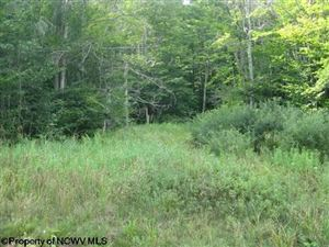 Photo of Lot 3 Northlake Development Drive, Davis, WV 26260 (MLS # 10110991)