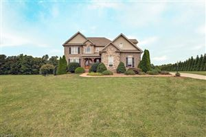 Photo of 190 Baltimore Downs Road, Advance, NC 27006 (MLS # 900184)
