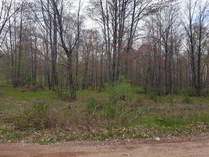 Photo of TBD Millie Estates, Iron Mountain, MI 49801 (MLS # 1114521)