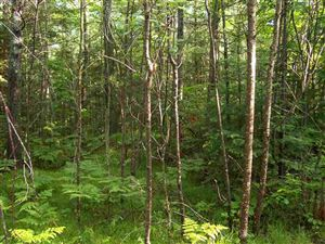 Photo of TBD Campbell #PCL 8, Florence, WI 54121 (MLS # 1112589)