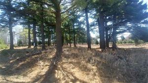 Photo of Lot Six Tall Pines, Iron Mountain, MI 49801 (MLS # 1111894)