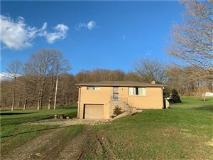Photo of 303 Snowden Rd, HOOKSTOWN, PA 15050 (MLS # 1370124)