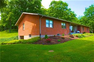 Photo of 1449 Mae West Rd, CONFLUENCE, PA 15424 (MLS # 1399153)
