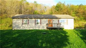 Photo of 1214 Oldmill Rd, BERLIN, PA 15530 (MLS # 1394552)