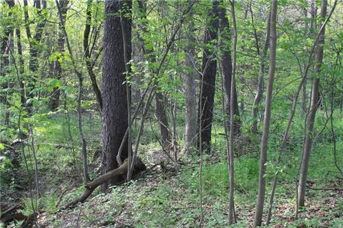 Photo of Lot Stein Road, CHICORA, PA 16025 (MLS # 1394619)