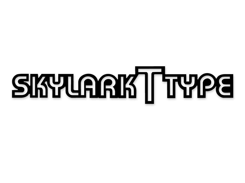 Buick Skylark T Type Names Decals Kit Black