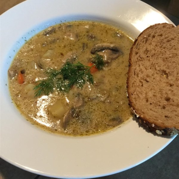 Receita de Cogumelo Russo e Sopa de Batata