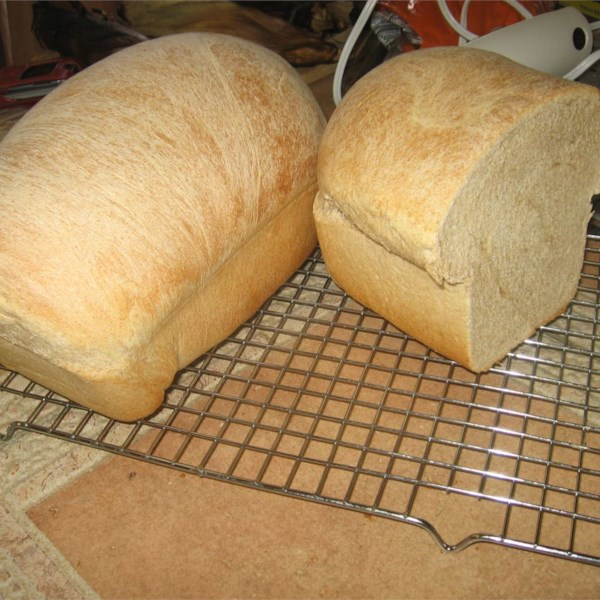 Receita de Pão de Trigo Integral II