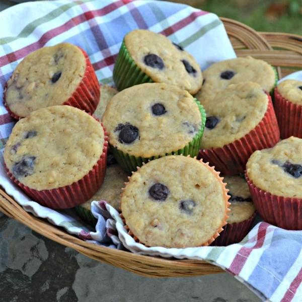 Receita de Muffins de Mirtilo Superfood