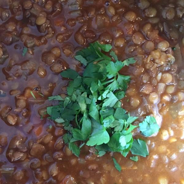 Receita de Sopa de Lentilha Vegana