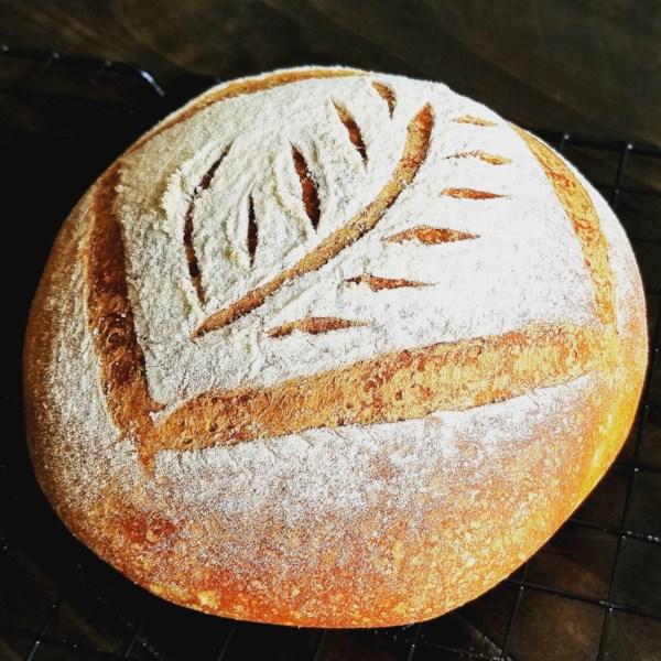 Receita de Pão de Abóbora do Chef John