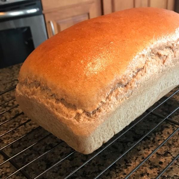 Receita de Pão de Trigo Integral de Mel
