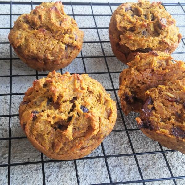 Receita de Muffins de Chocolate de Abóbora Sem Glúten
