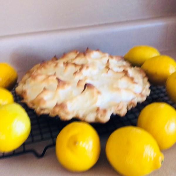 Receita de Torta de Merengue de Limão Agave-Agave