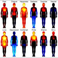 DBT Skills: The Physical Side of Emotions