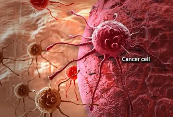 Image result for cancer