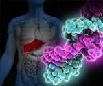 Hepatitis C: Transmission, Symptoms and Treatment