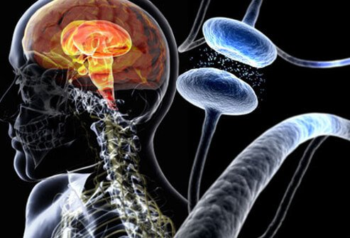 Parkinson's Disease Early and Later Symptoms, 5 Stages ...