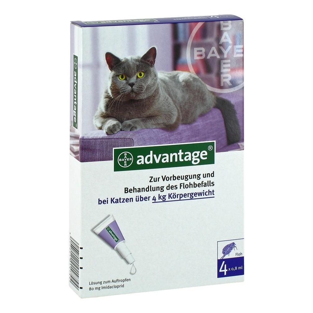Advantage 80 Lösung Fkatzen