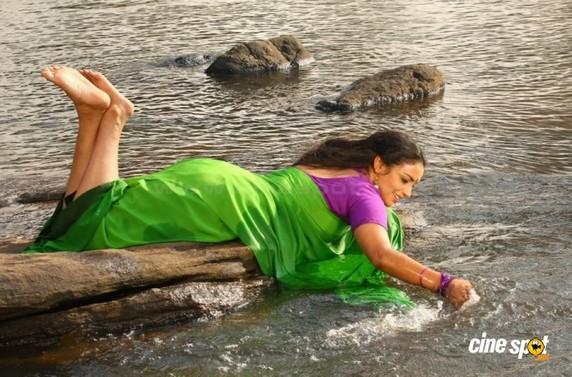 Swetha Menon Saree Small