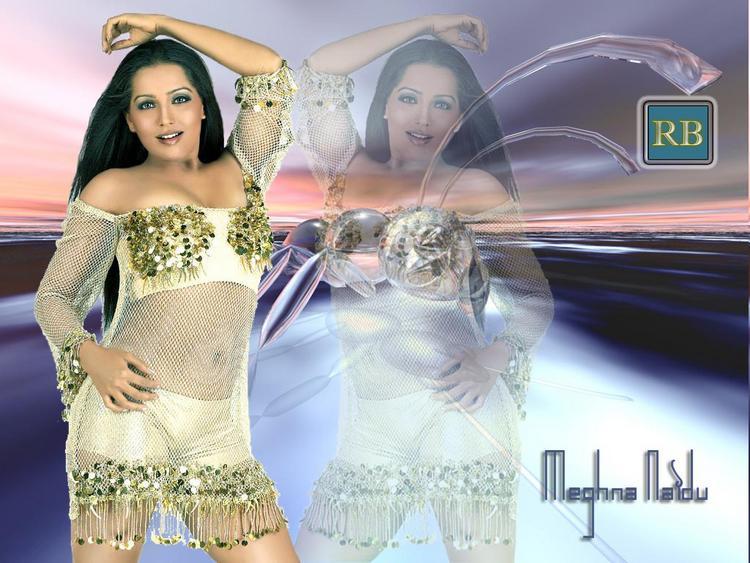 Meghna Naidu Hot Navel Show Wallpaper