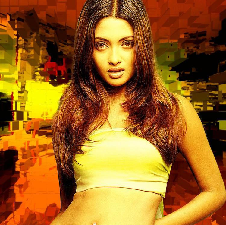 Riya Sen Gorgeous Face Look Wallpaper