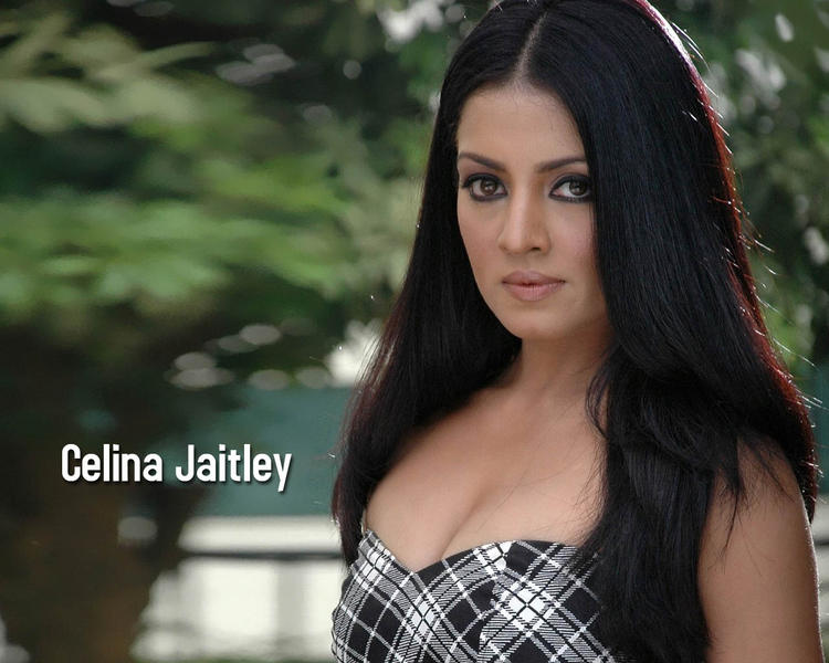 Celina Jaitley Attractive Look Wallpaper