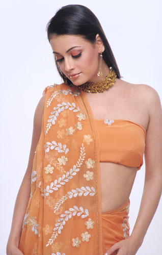 Diya Mirza Sexy Saree Romancing Still